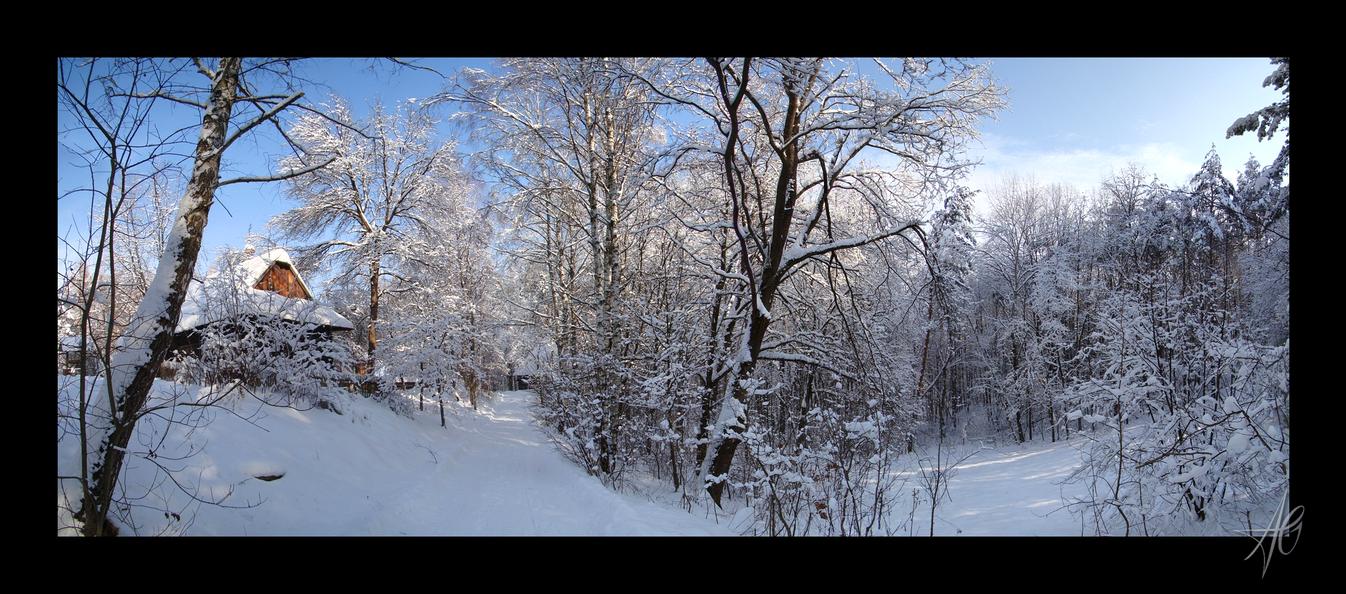 Winter III by AletheiaFelinea