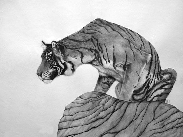 tiger2 by Sean188