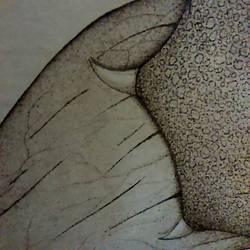Devorantem - close up 2