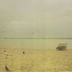 Polaroid 4. by MattGAllan