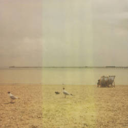 Polaroid 5. by MattGAllan