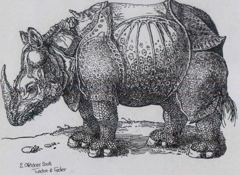 Rhino by Kill-chan