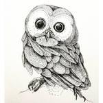 InkTober Day 1: Baby Owl