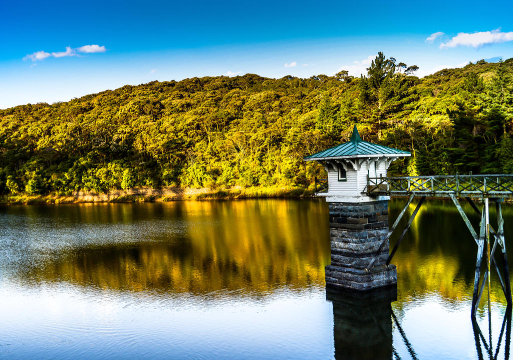 Water tower Dunedin NZ by zzha158