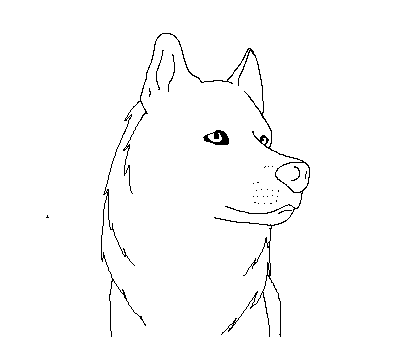 Husky Base 3 PAINT FRIENDLY FRANKENDOODLE FREE 328273018 on gallery y