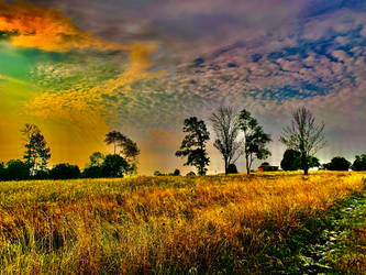 Retreat Amid the Yellowed Field
