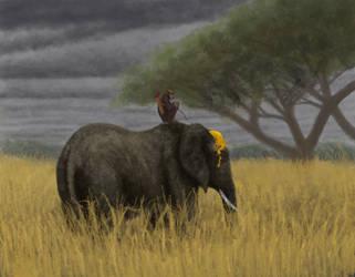 Monkey on Elephant
