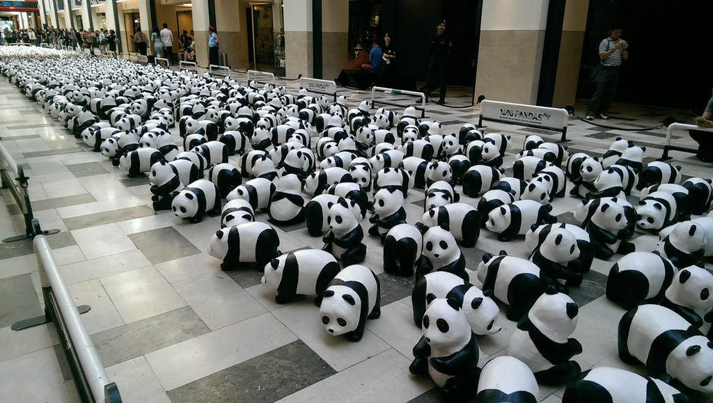 1600 Pandas! by TasmanianDevilzz