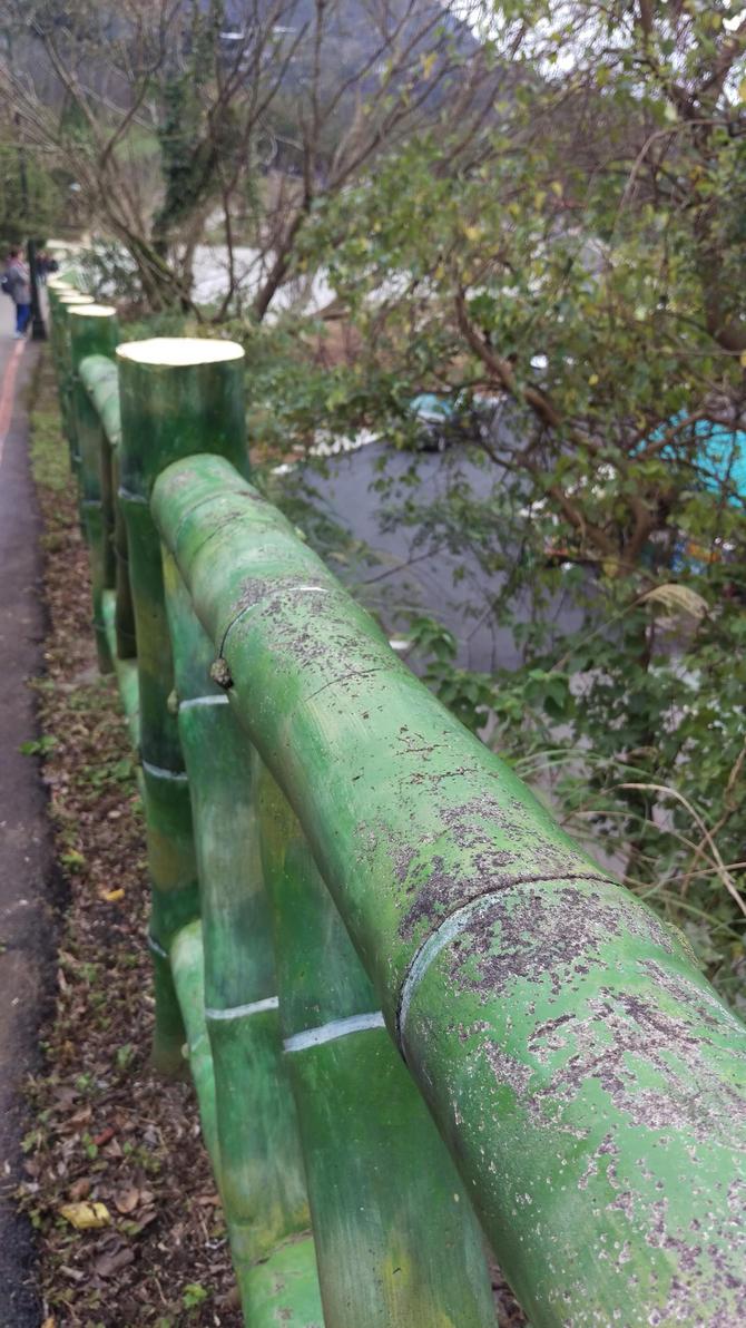 Bamboo Fence by TasmanianDevilzz