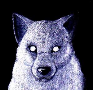 TonyCrynight's Profile Picture