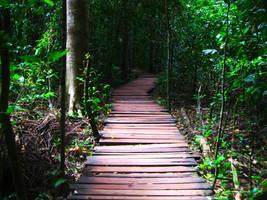 Jungle Adventure by TheBarracuda57