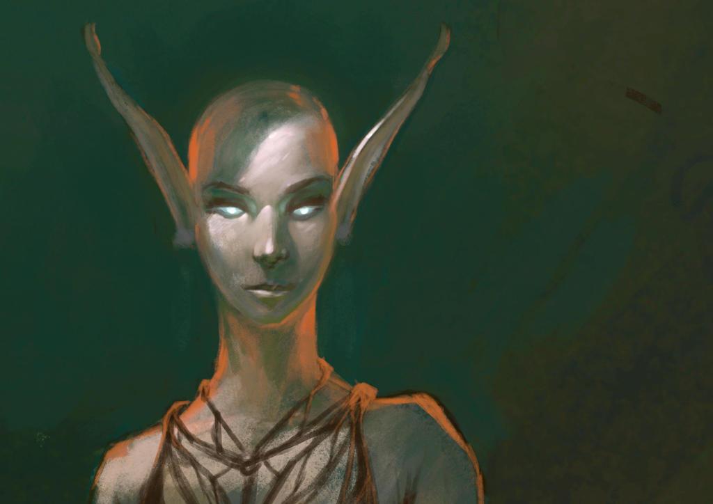 Tribal Elf by heinrichvonm