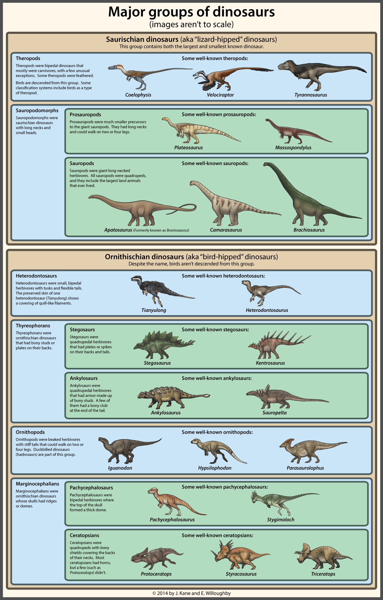 A simple guide to dinosaur classification