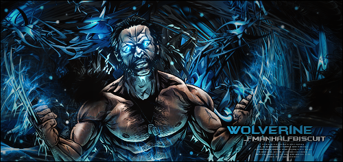 Wolverine by HalfManHalfBiscuitV2