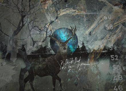 Deer by HalfManHalfBiscuitV2