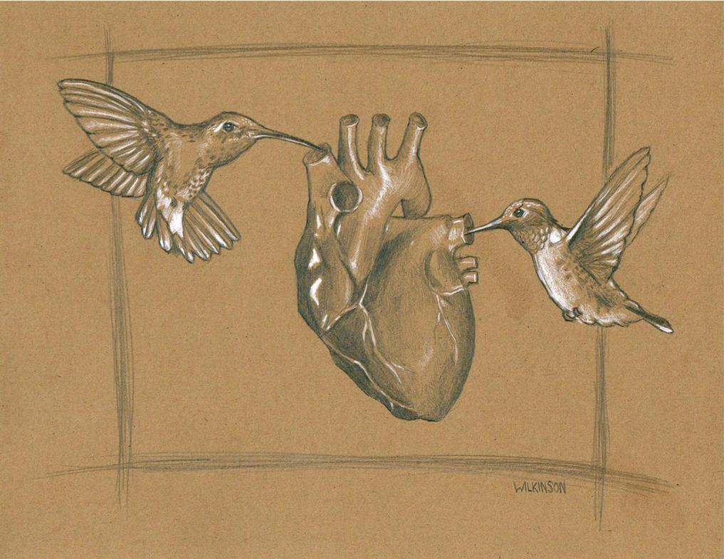 Hummingbird heart by sarahwilkinson