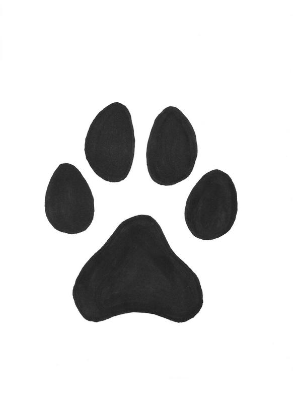 how to draw cat paw prints in sketches