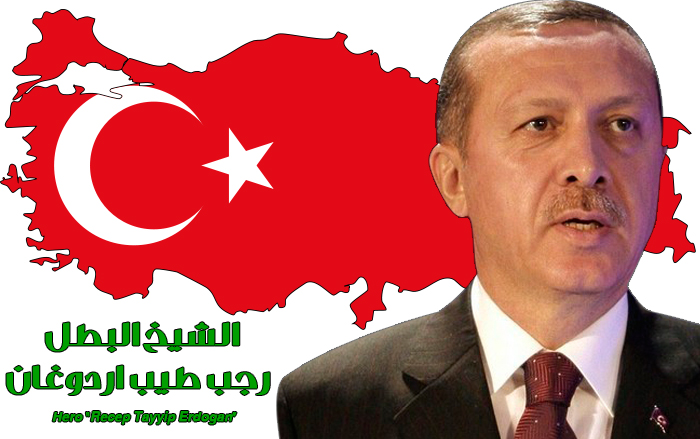 Hero Recep Tayyip Erdogan by palsun