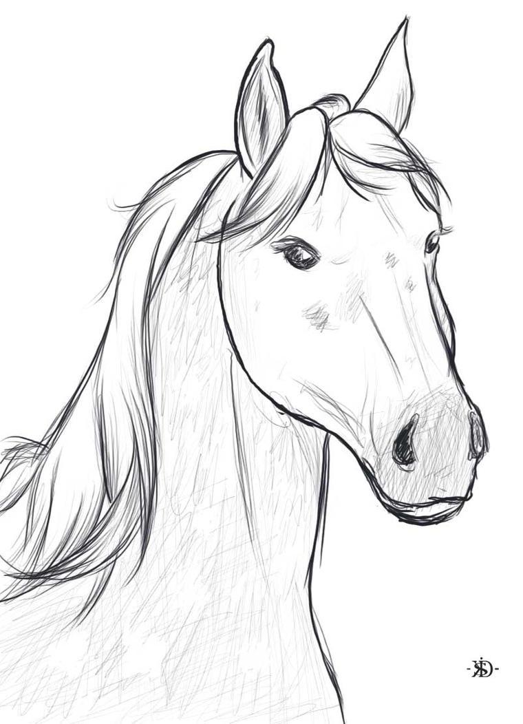 THE HORSE  #155  NOVEMBER 2015  NEW/UNREAD