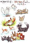 Day 1 Zooly - Fox by LeoDragonsWorks