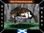22551 Firecracker