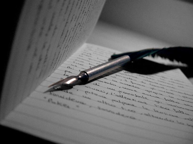 Black Like Me: Essay Q&A