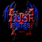 .:The Ultimate Sword Fighters - Elites:. Logo