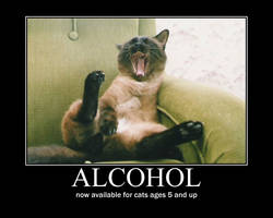 Drunk Kitty Motivational by Val30fDr3am5