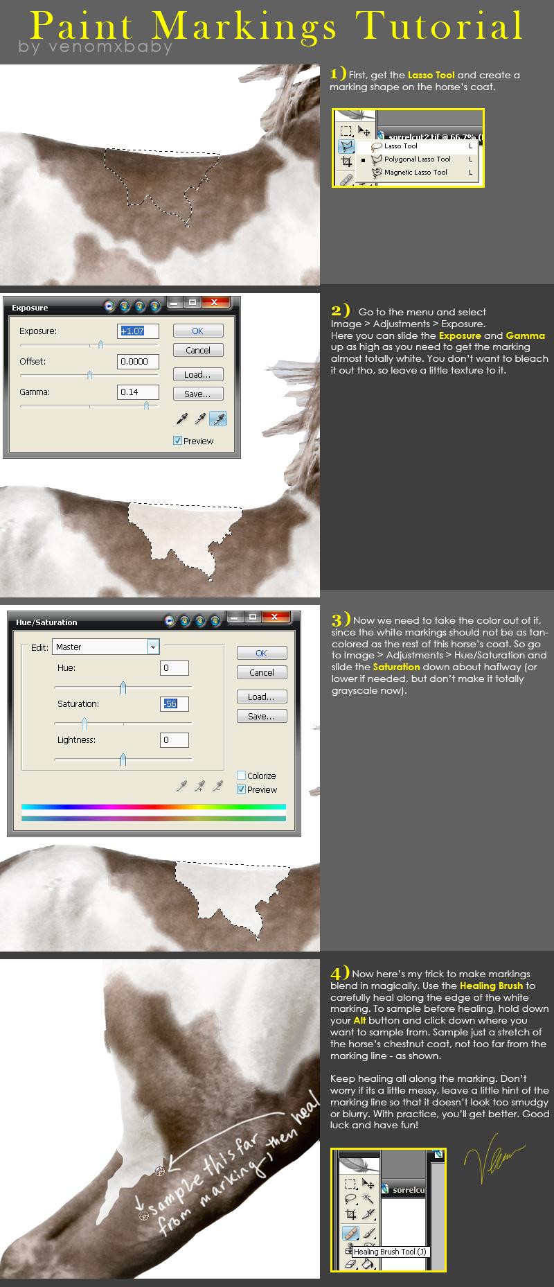 Horse Paint Markings Tutorial by venomxbaby