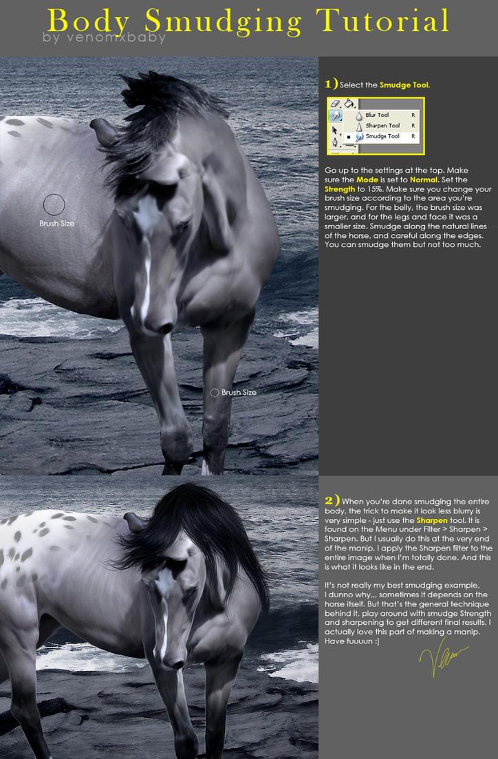 Horse Body Smudging Tutorial by venomxbaby