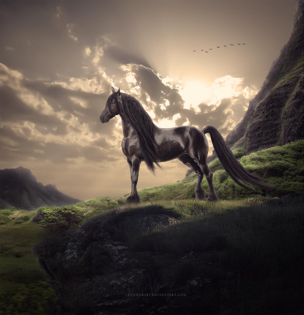 ���� thy_kingdom_by_venom