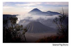 Selamat Pagi Gunung Bromo