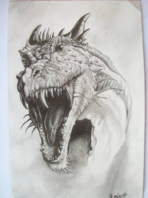 the dragon by croatian-artist-girl