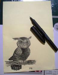 owl by croatian-artist-girl