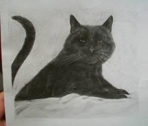 Lun by croatian-artist-girl