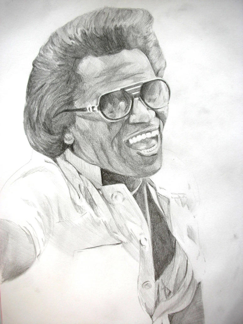 James Brown by ludo11