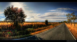 Golden Route by Ashale