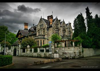 Villa Egli by Ashale