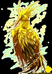 PKM: Zapdos Used Thunder Shock!