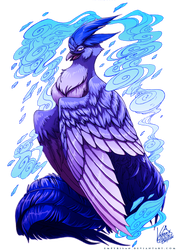 PKM: Articuno Used Icy Wind
