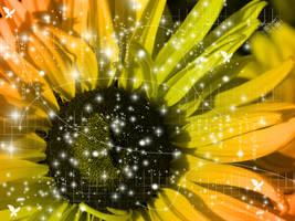 Sunflower by JadeSunset