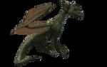 Millennium Hatchling Dragon 01