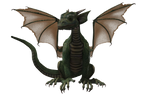 Millennium Hatchling Dragon 03