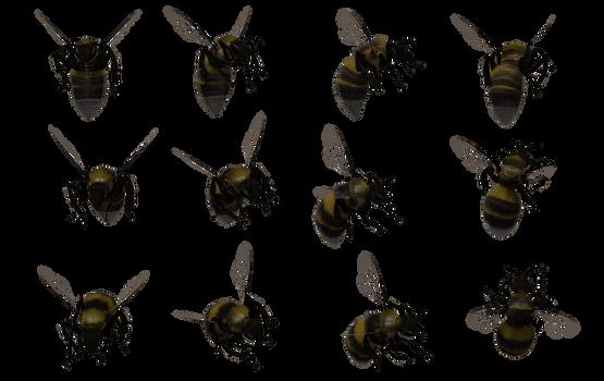 Bumble Bee Set 02