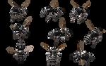 Bald Faced Hornet 04