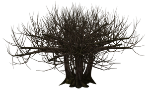 Tree 02 by Free-Stock-By-Wayne