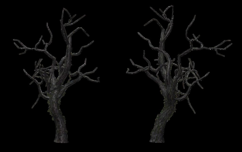 Tree 12 by Free-Stock-By-Wayne