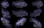 Fish Set 09