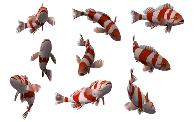 Fish Set 16 by Free-Stock-By-Wayne