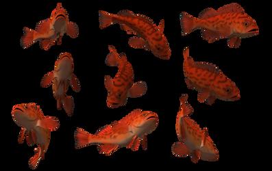 Fish Set 24 by Free-Stock-By-Wayne